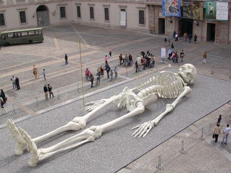 skelett-kopie.jpg